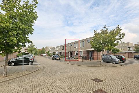 Stokroos 3 , Noordwijkerhout