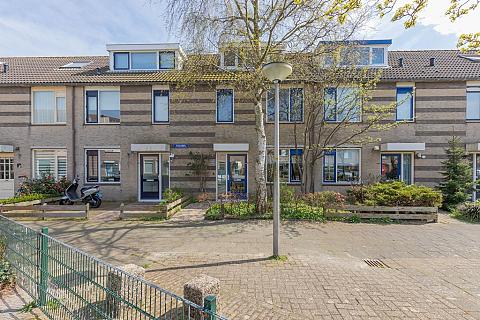 Westerhout 48 , Noordwijkerhout