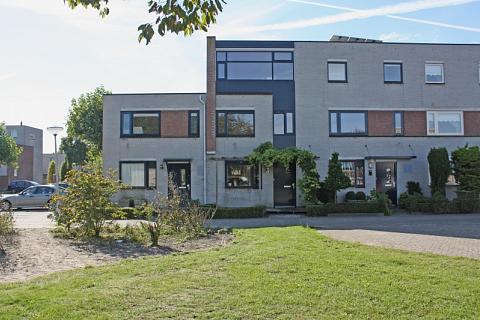 Astilbe 18 , Noordwijkerhout