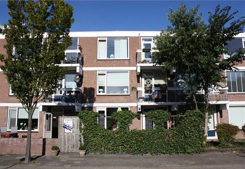 Braambos 25 , Noordwijkerhout