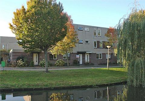 Stokroos 27 , Noordwijkerhout